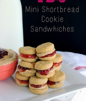 Peanut Butter & Jelly Mini Shortbread Cookie Sandwiches
