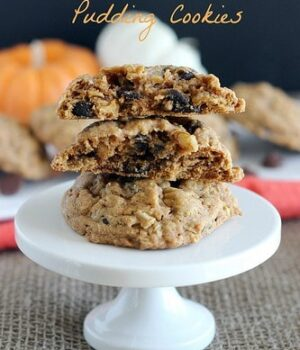 Oatmeal Pumpkin Spice Pudding Cookies
