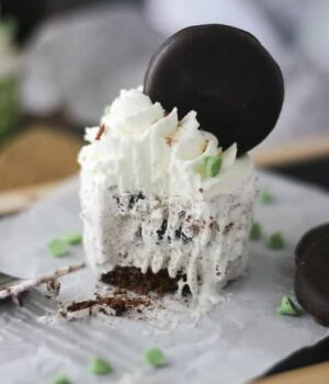 Thin Mint Ice Cream Cupcakes