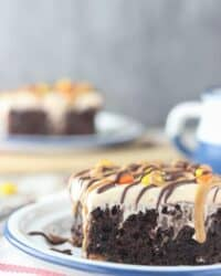 This rich chocolate poke cake is loaded with Reese's, smothered in chocolate pudding and topped with peanut butter whipped cream and drizzled with peanut butter and chocolate. This cake is for serious peanut butter lovers!