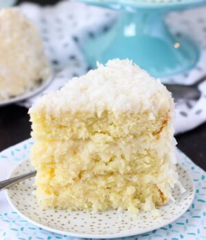 Coconut Custard Cake and Blog N Bake Retreat