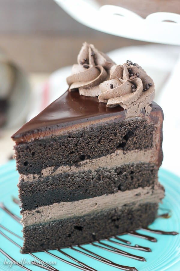 Side View of a Slice of Chocolate Cake