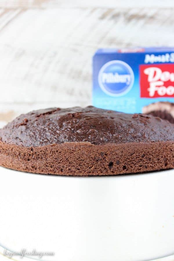 Pillsbury Devils Food Cake Mix. What is the best boxed chocolate cake mix? This post will answer your questions. It is the best guide explaining the differences between boxed cake mixes.