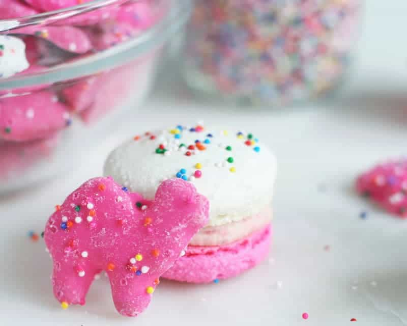 Circus-animal-cookie-macarons