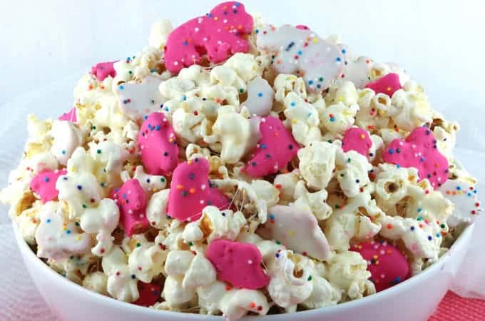 Circus-animal-popcorn