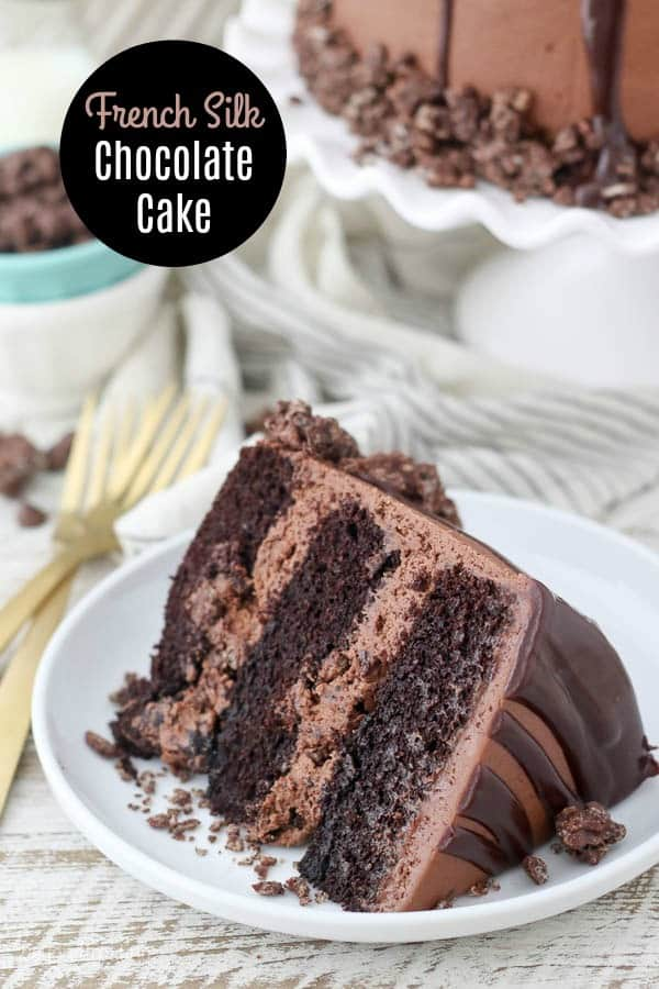 A gorgeous slice of chocolate cake on a white rimmed plate, and a text overlay