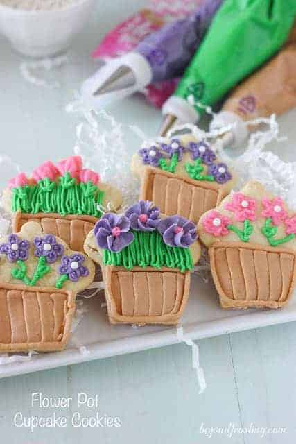Flower Pot Cupcake Sugar Cookies