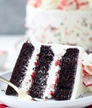 Chocolate Peppermint Cake