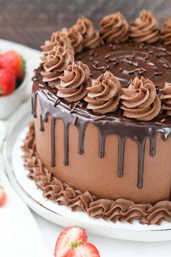 Chocolate Cake Recipe - Beyond Frosting