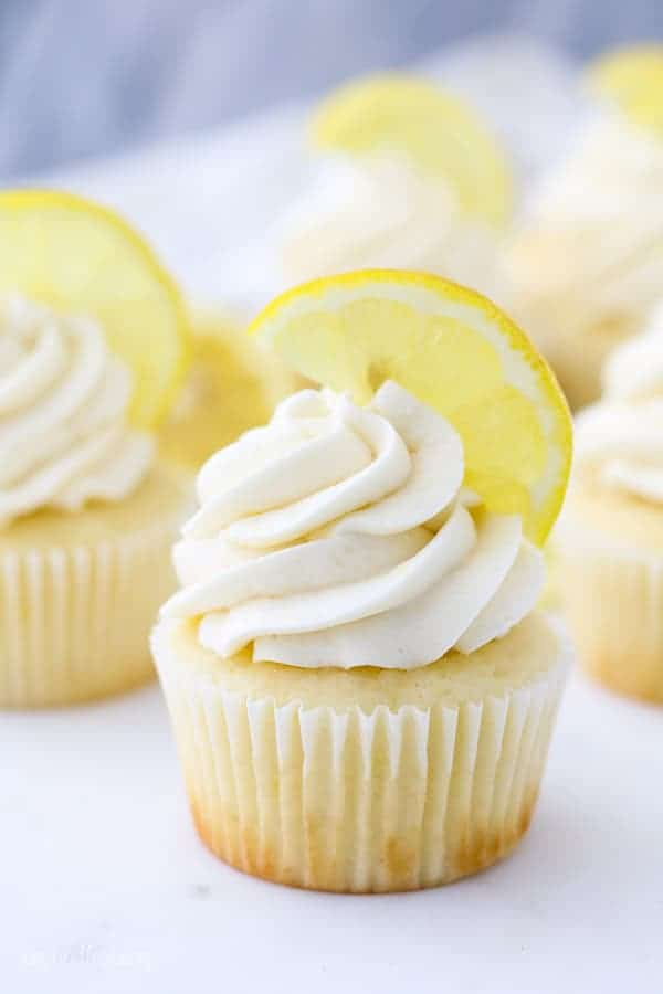 A gorgeous lemon cupcake with a big swirl of lemon frosting on top and a thinly sliced lemon sitting on top of the frosting