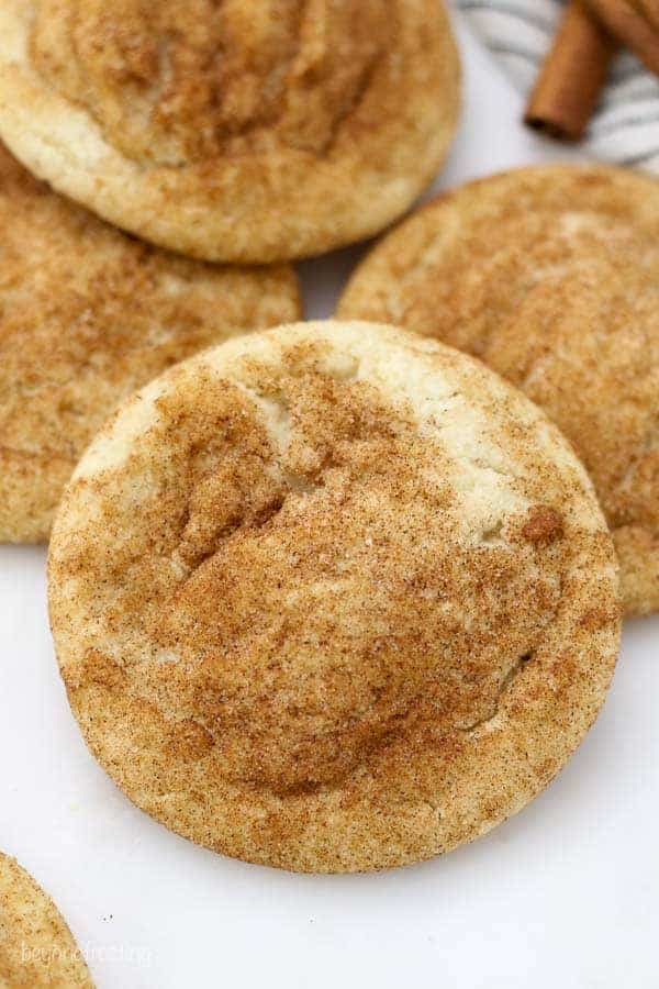 A close up shot of a Snickerdoodle cookie showing the ridges in the cookie