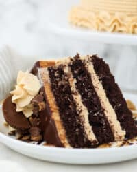 a white plate with a slice of 3 layers chocolate cake with peanut butter frosting and Reese's peanut butter cups