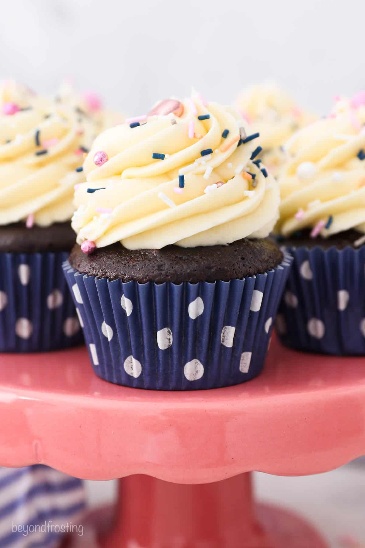 a chocolate cupcake in a navy polka dot liner with vanilla frosting and sprinkles