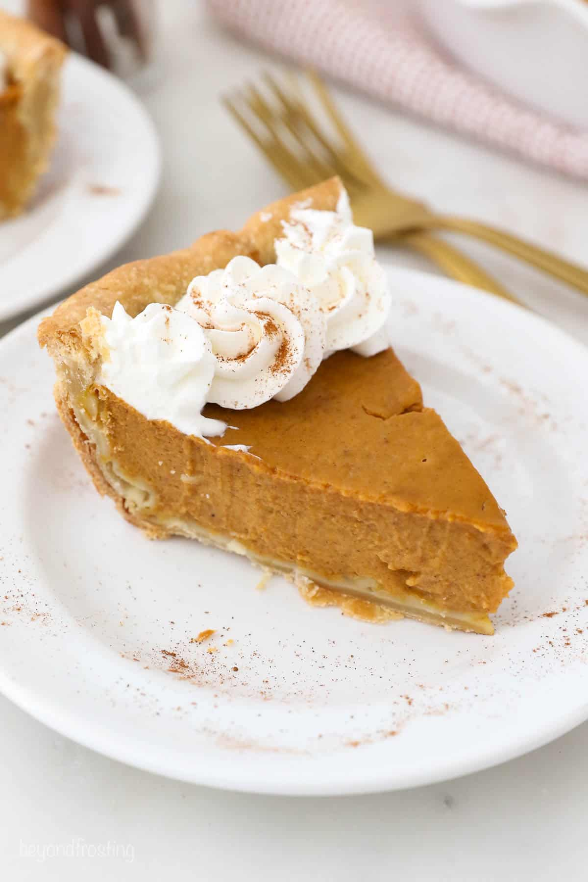 A slice of Pumpkin Pie with Homemade Whipped Cream.
